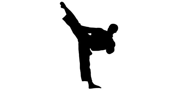 karate2